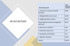 AB 2021 Bütçesi Nereye Harcanacak?