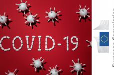 Coronavirus: Erasmus+ ve Avrupa Dayanışma Programı Katılımcılarının Soruları